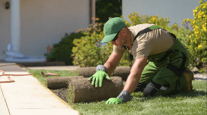 We Take Pride In Your Lawn